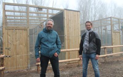 Eiderst. Steinkauzprojekt 2021 ug01